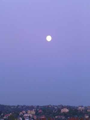 aec9680b20 A bal kép a mai reggel. Teleholddal, mikor már a nap is készült felkelni. A  jobb kép a mai este. Józsi bácsi: - Tudod, csibém, akinek a szemöldöke  fölött ...